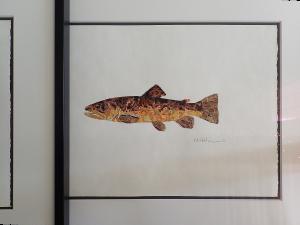 framed-brown-plus